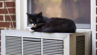 How Your Air Conditioning Is Causing Hotter Summer Nights