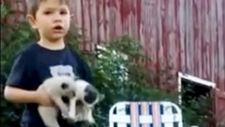 This Little Boy Gets An Early Lesson In Herding Kittens With This 'Cat Situation'