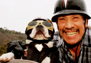 Danny Trejo's Story Of Addiction And Redemption Will Put A Smile On Your Face