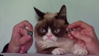 Grumpy Cat Will Be The First Cat Immortalized By Madame Tussauds