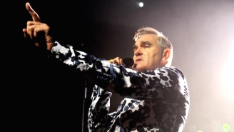 Australia Declared War On Its Feral Cat Population, Now Morrissey's Declared War On Australia