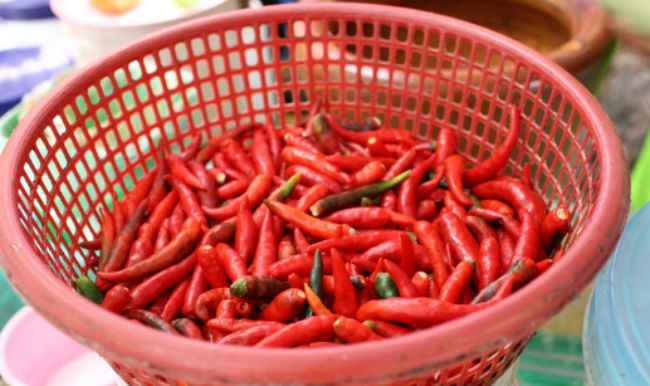 peppers-in-pot