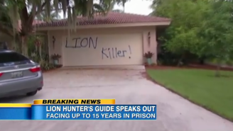 The Dentist Who Killed Cecil The Lion Had His Vacation Home Vandalized