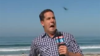 Watch This Local Weatherman Freak Out When A Large Bug Flies At His Face