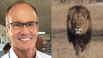 The Dentist Who Killed Cecil The Lion Surfaces And Regrets His Critics' Lack Of 'Humanity'