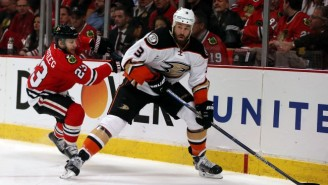 Why Ducks Defenseman Clayton Stoner Is Getting Charged For Killing A Grizzly Bear