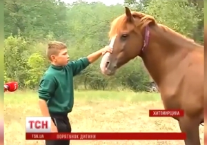 This 6-Year-Old Boy Had His Penis Chomped Off By His Pet Horse