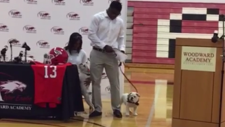 Evander Holyfield's Son Used Actual Bulldog Puppies To Commit To Georgia