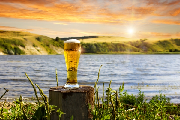 SD Beer shutterstock_296495060