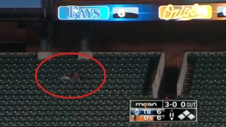 This Sleeping Fan Was Awakened By A Walk-Off Bomb From Orioles' Chris Davis