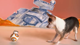 101 days until Star Wars: BB-8 playing with puppies will warm your Sith heart