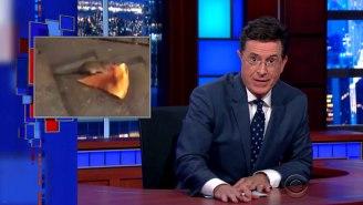 Stephen Colbert Jumps On Board The Pizza Rat Bandwagon