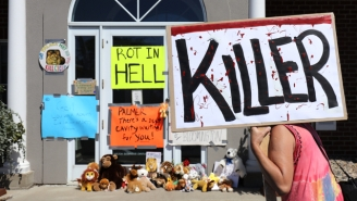 Walter Palmer Was Greeted With Stuffed Lions And Protestors As He Returned To Work