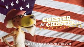Cheetos Mascot Chester Cheetah Is Running For Mayor Of Chester, Montana