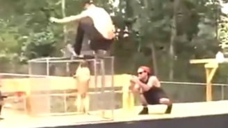 This German Shepherd Took Out A Skateboarder Who Should've Never Trusted A Dog