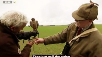 Watch This Highly Trained Falcon Fly Headfirst Into The Path Of A Speeding Semi