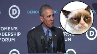 President Obama Did His Best Grumpy Cat Impression To Mock The GOP