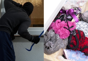 The Bizarre Details Of A Serial Lingerie Thief Who Was Caught With 185 Worn Panties