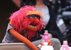 Morning TV Round-Up: 'The Muppets,' 'The Grinder' & 'The Flash' reviews
