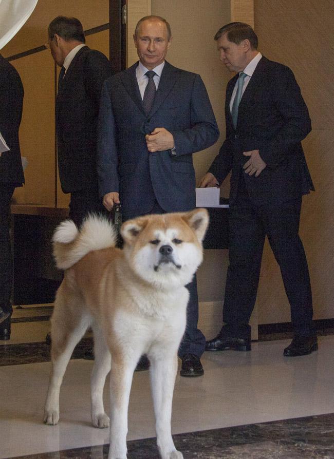 President Vladimir Putin Receives World Leaders to Sochi