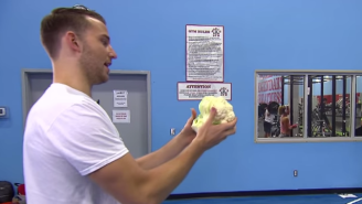 Watch Nik Stauskas Shoot Vegetables And Other Random Objects Through A Hoop