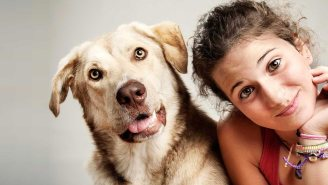 This Site Matches You With The Perfect Dog, Match.com Style