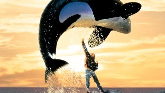 Sea World Is Halting Orca Shows In San Diego — Is It Enough?