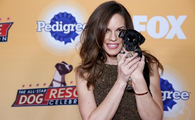 "FOX's Second Annual ""The All-Star Dog Rescue Celebration"""