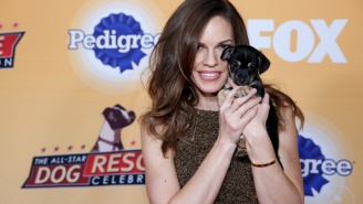 What's On Tonight: '2 Broke Girls' And Hilary Swank's Dog Adoption Special