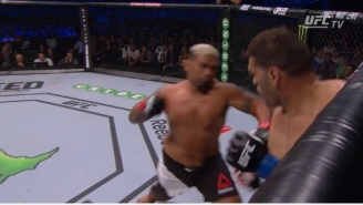 Mark Hunt Landed A Huge Knockout At UFC 193