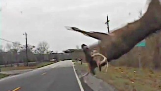 A Kentucky Policeman Called Santa After Hitting A Flying Deer (Really)
