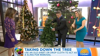 John Cena Learning About Christmas Decoration Storage 'Hacks' Is Today's Weirdest Thing