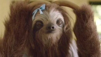 The Internet Is Laughing Too Hard To Take This 'Stoner Sloth' Anti-Drug PSA Seriously