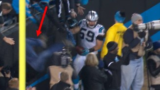 This Carolina Panthers Fan Fell From The Stands Trying To High-Five Luke Kuechly