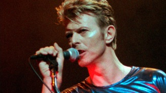 David Bowie's music has even been used to save polar bears