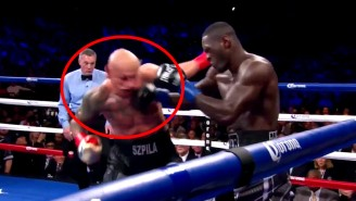 Wince In Awe Of Heavyweight Champ Deontay Wilder's Devastating KO Of Artur Szpilka