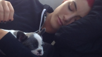 Two WWE Divas Adopted Adorable Dogs And It's The Only News That Really Matters