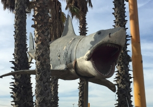 Why this guy is giving up his prized shark from 'Jaws'