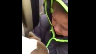 This Little Boy's Sobbing Reunion With His Missing Dog Will Give You All The Feels