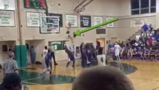 The Greek Freak's Little Bro Put A Guy On A Poster In D-League Play