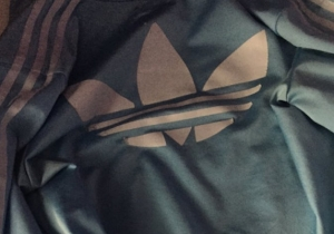Quick Question: What Color Is This Jacket?