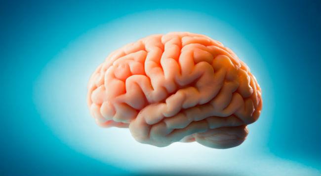 Is A Lack Of Vitamin B12 Causing Autism, Schizophrenia And Dementia?