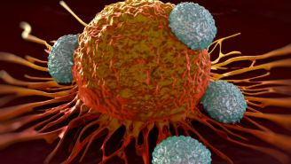 Is Immunotherapy A Cure For Cancer? What You Need To Know.