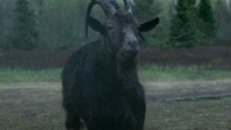 'The Witch's' Black Phillip is such a star he now has his very own trailer