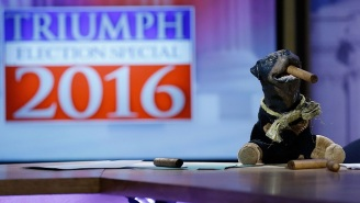 'Triumph's Election Special' Is Great, Even If It Doesn't Quite Feel Like Its Own Show