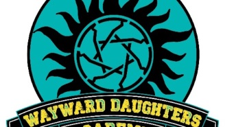 Can Wayward Daughters become the Supernatural spin-off fans are looking for?