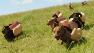 Heinz Has Already Won The Super Bowl With This 'Wiener Stampede' Commercial