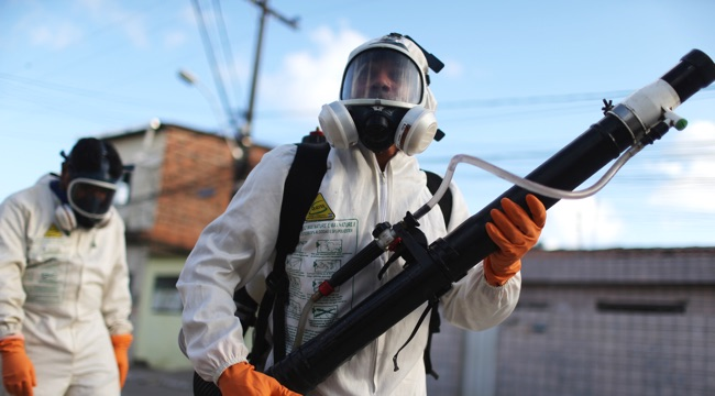 Brazil Faces New Health Epidemic As Mosquito-Borne Zika Virus Spreads Rapidly