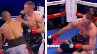 This Brutal Haymaker Is Your Latest Candidate For 'Knockout Of The Year'