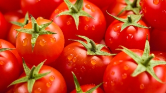 Will Disney World Soon Be Powered Exclusively By Tomatoes?